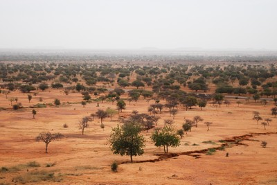Landscape of Sahel, Africa. Photo by Daniel Tiveau for CIFOR via Flickr (CC BY-NC-ND 2.0)