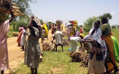 Women collecting firewood in Darfur.