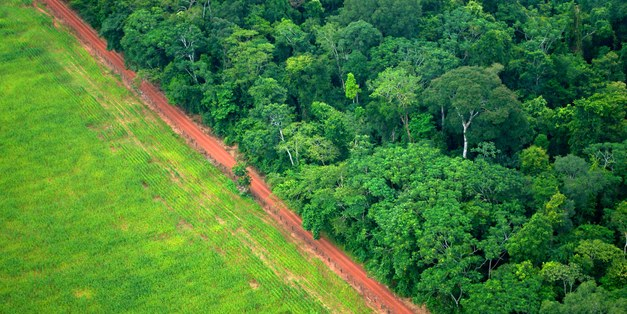 Agricultural commodity consumption and trade responsible for over 40% of tropical deforestation