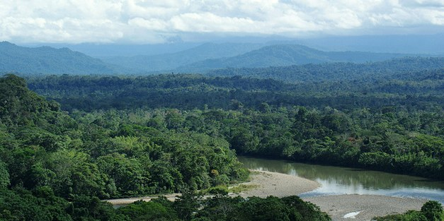 Agroforestry in the western Amazon – opportunities for new markets and threats from expanding natural resource extraction