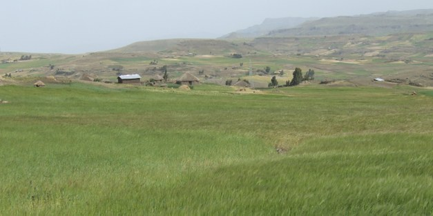 Article: Ten principles for a landscape approach to reconciling agriculture, conservation, and other competing land uses