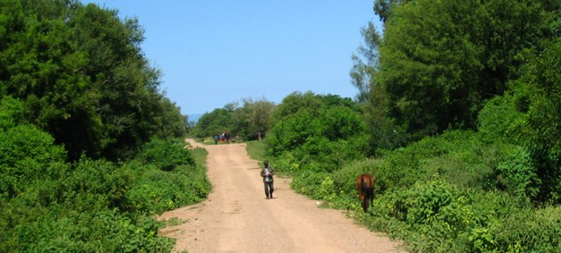 Communities and Carbon - Establishing a Community Forestry-REDD project in Cambodia