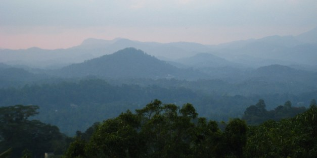Country Report Sri Lanka. Land-use change and forestry at the national and sub-national level.