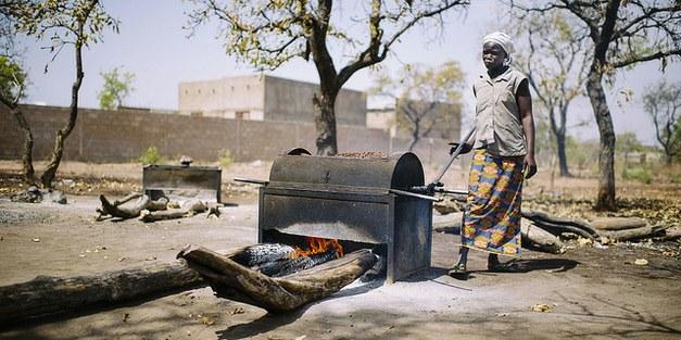 Defining Solutions, Finding Problems: Deforestation, Gender, and REDD+ in Burkina Faso