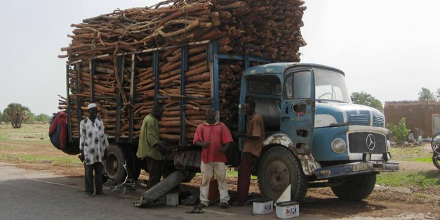 Brief: Making REDD+ work for the poor in Burkina Faso