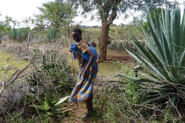 Almedalen seminarium: Feminism och skog – en kärleksaffär