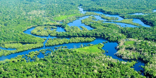 Buying conservation in tropical developing countries?