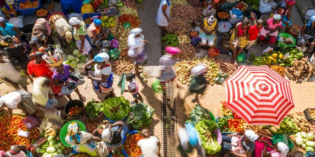 Call for abstracts: Agri4D 2021 – food systems for new realities