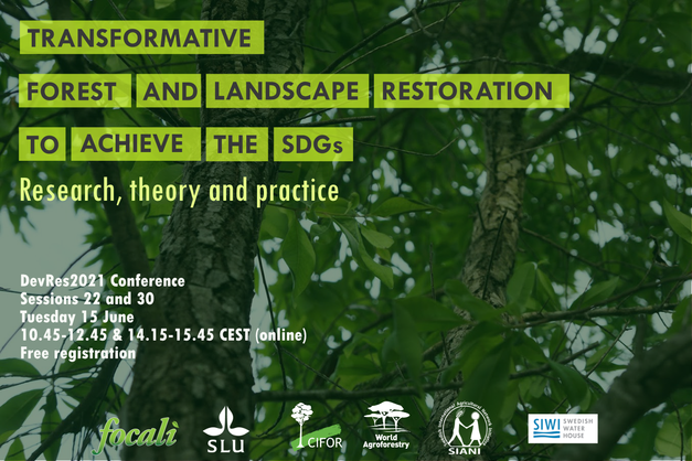 DevRes sessions: Transformative Forest and Landscape Restoration to achieve the SDGs – Research, theory and practice