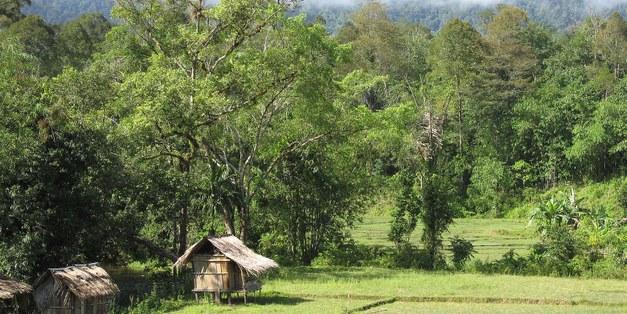 Focali-LUCSUS Workshop on Forest conservation, agroforestry and livelihoods