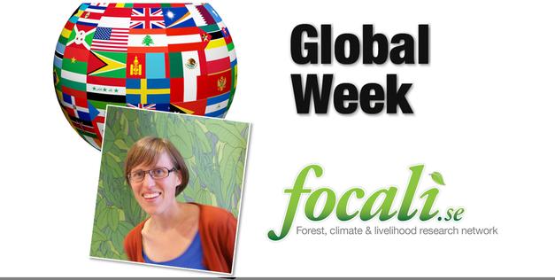 Focali researcher Lisa Westholm will speak at Global Week