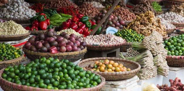 Konsumera mat utan tropisk avskogning – går det?