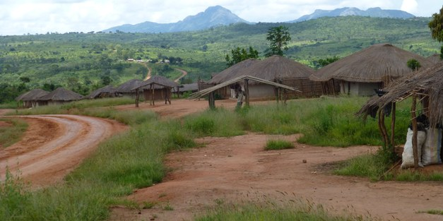 Lessons learned from new approaches to secure land tenure – Findings from Mozambique and Tanzania