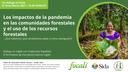 Los impactos de la pandemia en las comunidades forestales y el uso de los recursos forestales  - ¿Qué sabemos, qué necesitamos saber y cómo averiguarlo?