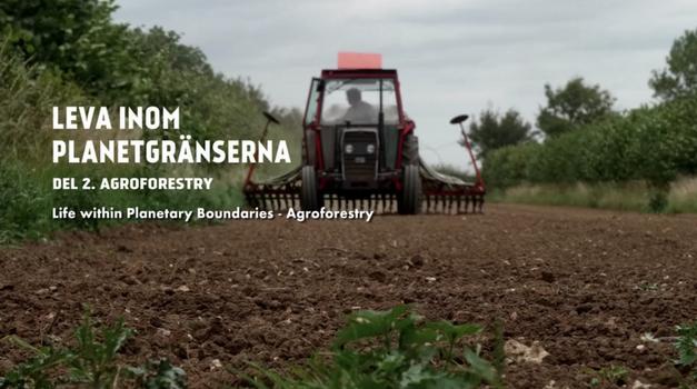 Movie night: Life within planetary boundaries - Agroforestry