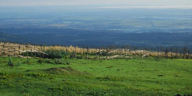 Open LARRI seminar: Land Tenure Reforms in Asia and Africa