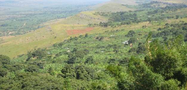 Conference: Production and Carbon Dynamics in Sustainable Agriculture and Forest Systems in Africa–Science Needs and Deeds
