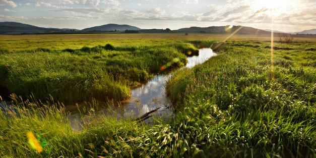 Vattnets betydelse i landskapsrestaurering