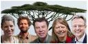 A golden opportunity: Halt deforestation with agroforestry