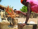 Agricultural development as a driver for change
