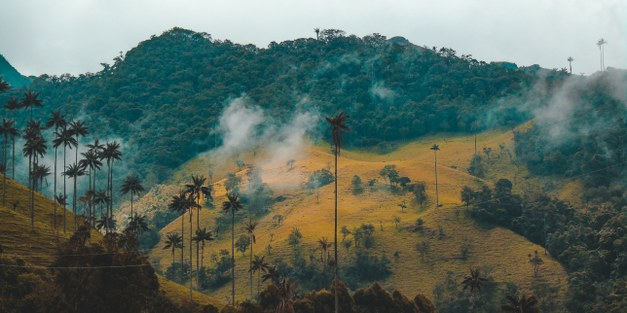 Colombia's environment in the post-conflict transition: New set-backs by the global pandemic