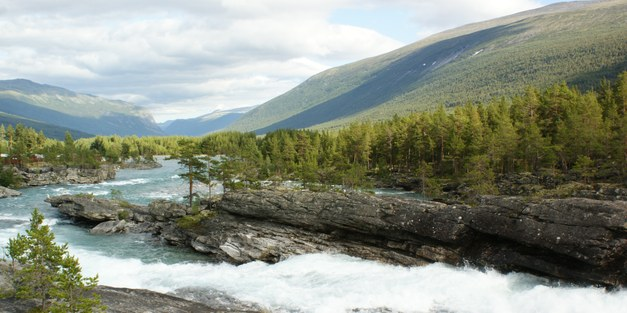 Evaluation of Norway's International Climate and Forest Initiative