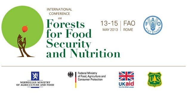 FAO International Conference on Forests for Food Security and Nutrition