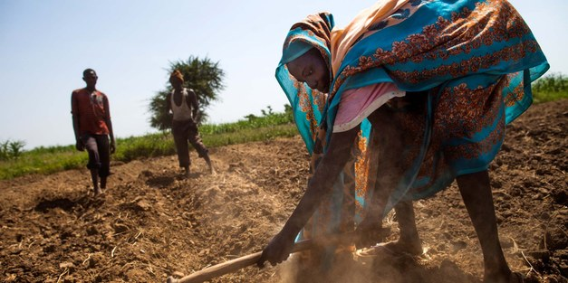 Reap what you sow: Turning agriculture into an opportunity for the youth in the Sahel
