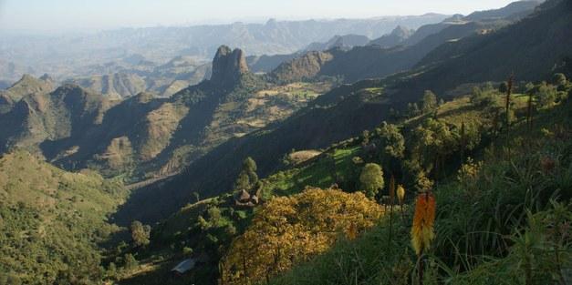 Register for the Global Landscape Forum